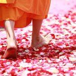Meditace v chůzi